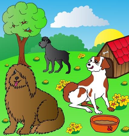 siesta: Cani siesta su giardino - illustrazione vettoriale