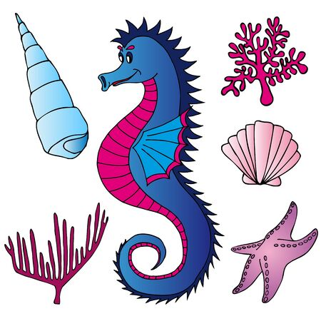 Seahorse shells and plants - vector illustration Stock Vector - 14031417