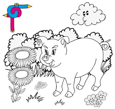 hayfield: Coloring image pig - vector illustration. Illustration