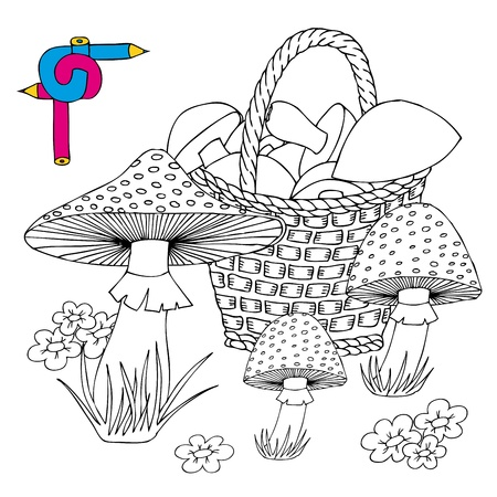 Coloring image mushrooms - vector illustration.