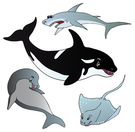 orca: Various marine fishes collection - vector illustration  Illustration