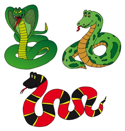 Various collection snake - vector illustration