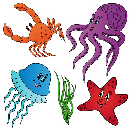 Various marine animals collection - vector illustration. Illustration