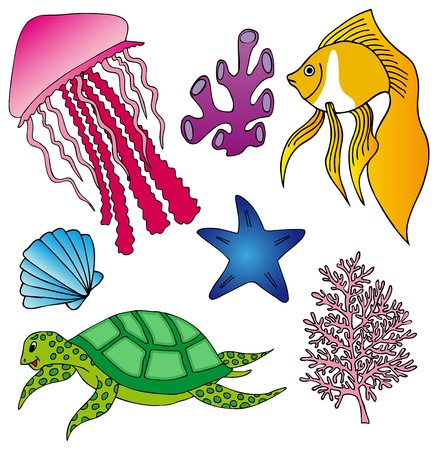 ocean plants: Various marine animals collection 2 - vector illustration.