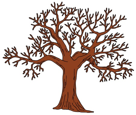Tree without leaves Stock Vector - 16843448
