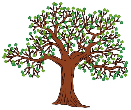 treetop: Tree with green leaves Illustration