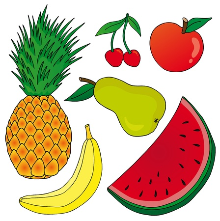 Fruits on white background Vector