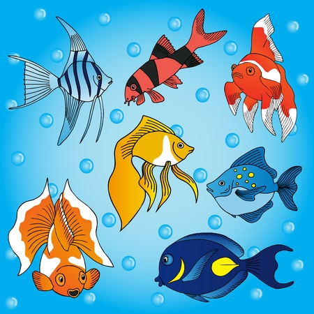 Sea fish collection - vector illustration.