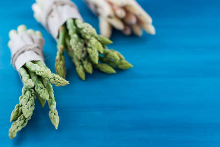 Asparagus green on a blue background pattern
