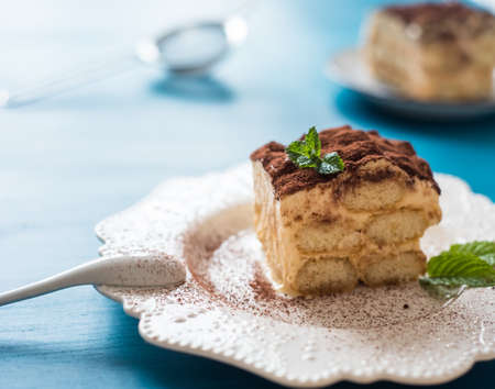 Homemade tiramisu dessert, Italian tiramisu dessert on a porcelain plate