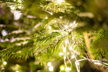 Decorated and illuminated christmas tree, vintage toning