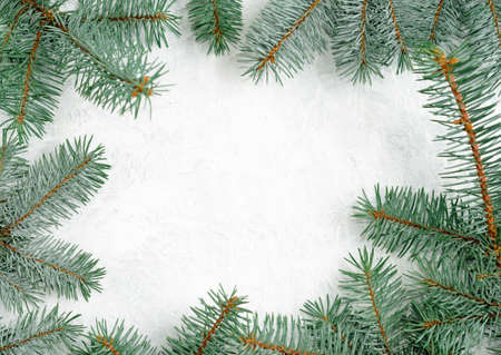 Christmas frame made of fir branches, red berries. Christmas wallpaper. Flat lay, top view, copy space