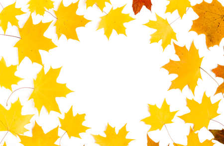 Autumn composition. Pattern made of autumn leaves. Flat lay, top view Stockfoto - 128261263