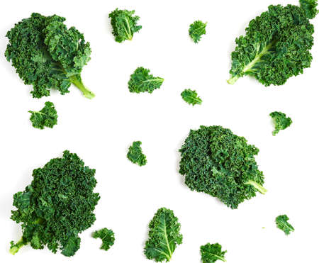 Creative layout made of kale.