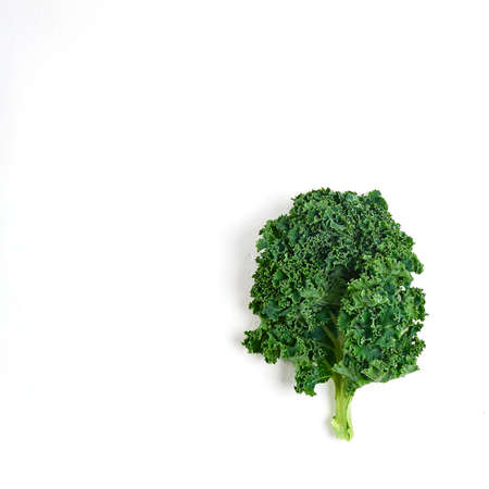 leaf of healthy kale salad on a white background, superfood Foto de archivo