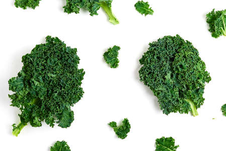 Creative layout made of kale. Flat lay. Food concept.