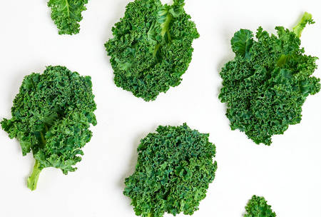 Creative layout made of kale Stock fotó