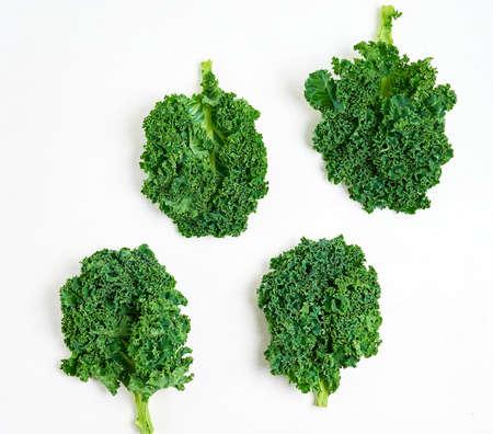 Kreatives Layout aus Grünkohl. Flach liegen. Gesundes Lebensmittelkonzept.