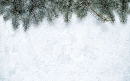 Christmas tree branches that form the frame for the Christmas background on white