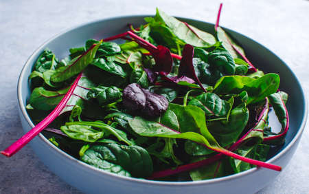 chard salad in a blue bowl on blue background