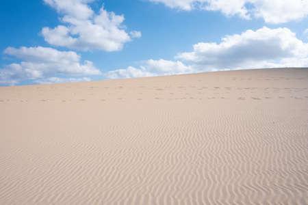 Golden sand in dune, background of sand in the desert