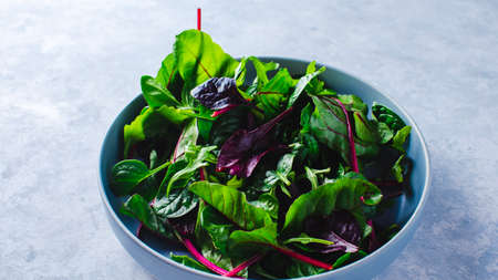 chard salad in a blue bowl on a blue background Stockfoto