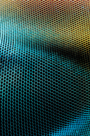 compound eyes: Extreme magnification - Dragonfly compound eye texture