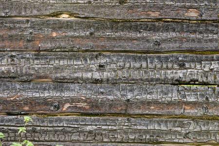 burnt wood: Burnt wood texture Stock Photo