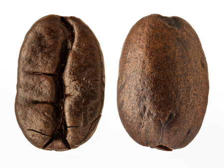 extreme angle: Extreme magnification - Coffee bean, two views isolated
