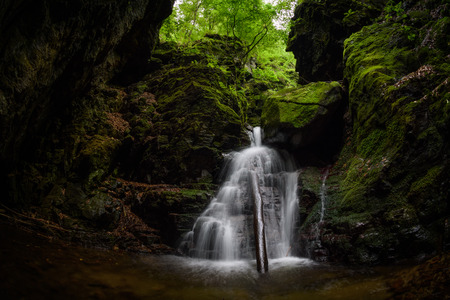 Waterfall and rocks covered with moss in the forest