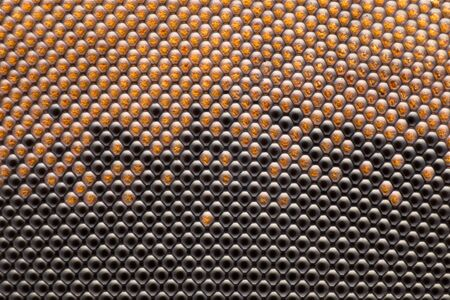Extreme Magnification - Fly compound eye with microscope, 50x magnification Stock Photo