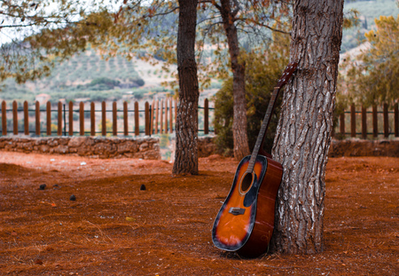 guitar outdoors laying on a tree and dead yellow leafs on the ground at a park an autumn sunny day