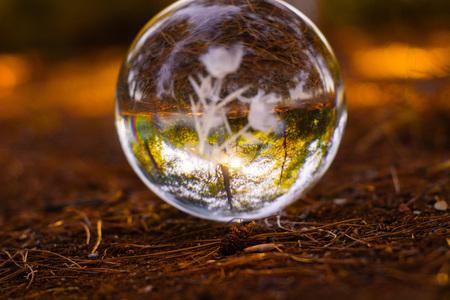 autumn scenery crystall ball on the ground with orange autumn leafs