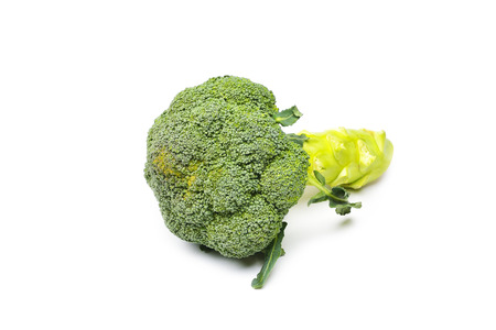 brocoli: brocoli on a white background