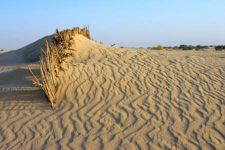 The barrier not giving to sand to fall asleep an oasis Stock Photo - 584312
