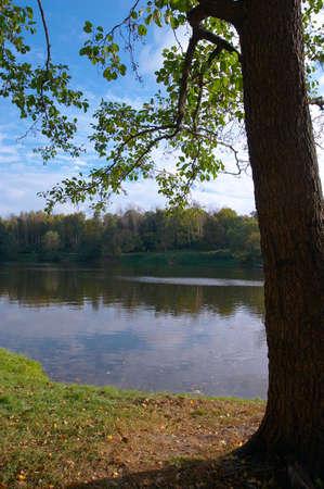 Linden on coast of lake in autumn solar September day Stock Photo - 587665
