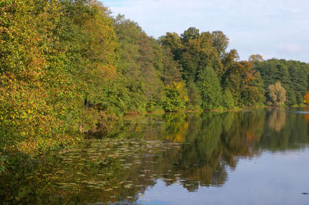 Autumn wood around of lake in a sunny day of September Stock Photo - 589475