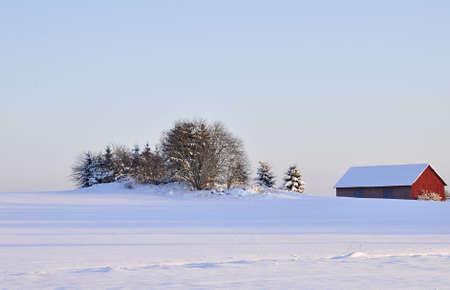 wintry: Wintry landscape