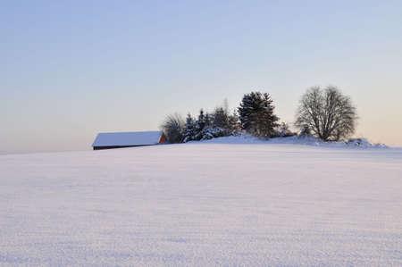 wintry: Wintry landscape,