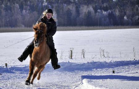 Altuna, Sweden-February 18: A participator of icelandic horse competition race in Altuna, Bjorsbo, February 18, 2011