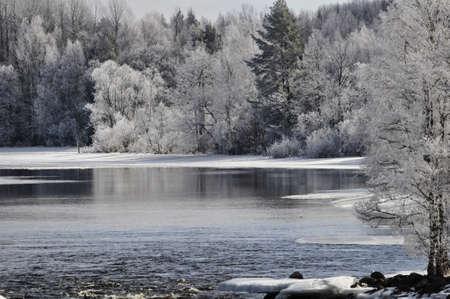 riverside landscape: River landscape in spring