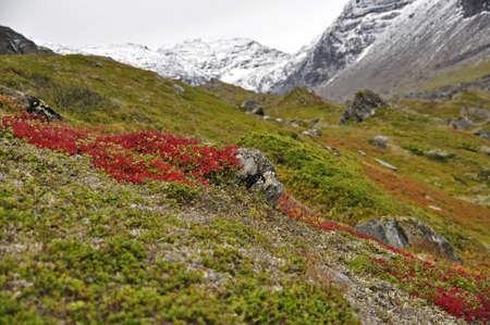 Mountain landscape in northern scandinavia Stock Photo - 15327532