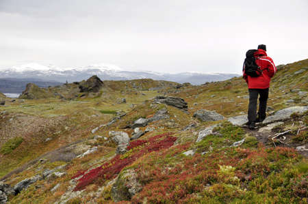 Hiker on mountain landscape in north of Sweden Stock Photo - 15327531
