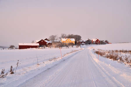 wintry: Track through a wintry landscape at sunset