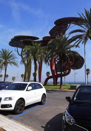 白と黒の車をビーチ駐車場