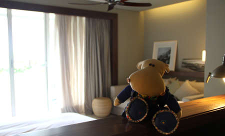 Hippo - traveler Stock Photo