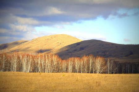 Chocolate and orange hills