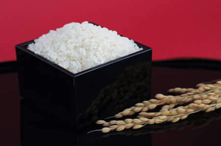 lacquered: rice in the black lacquered measure