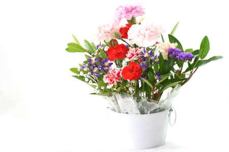 arranged flower                   photo