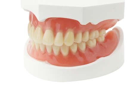 白の背景にクリッピング パスを持つ義歯 写真素材